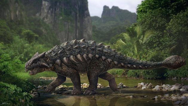 恐龙挖掘技术哪家强